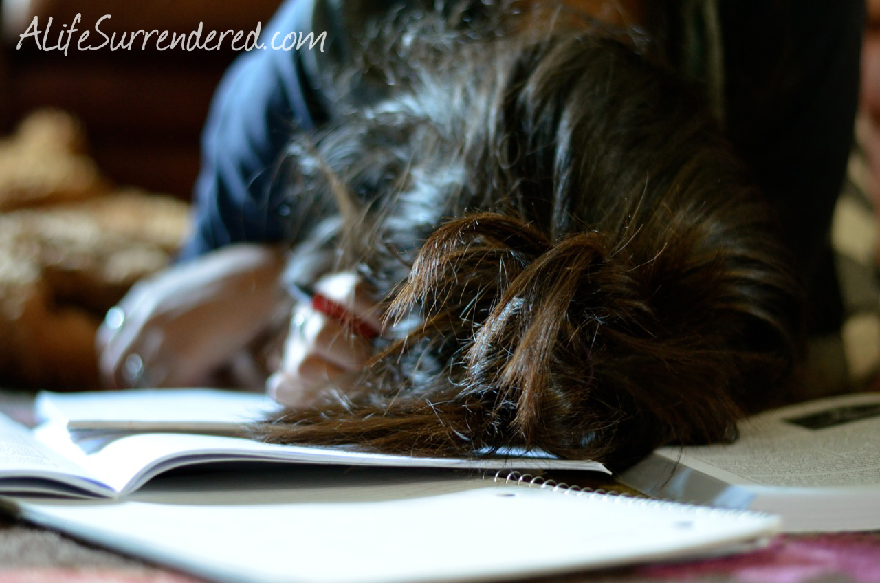 Homeschool Journal :: Can I invite you in to a place that is far from perfect?