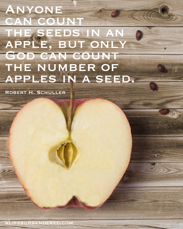 """Anyone can count the seeds in an apple, but only God can count the number of apples in a seed."" -- Robert H. Schuller #deliberate31days"