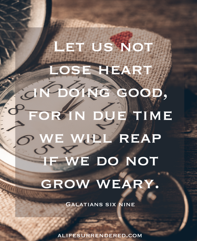 """Let us not lose heart in doing good, for in due time we will reap if we do not grow weary."" Gal 6:9 #deliberate31days"