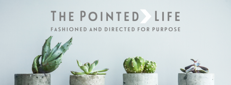 The Pointed Life: Fashioned and Directed for Purpose