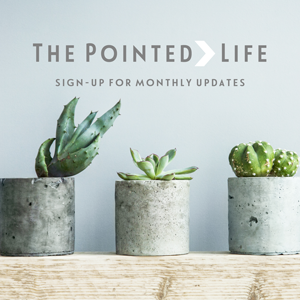 The Pointed Life Updates
