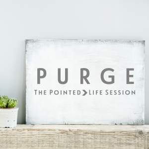 Pointed-Session-Purge